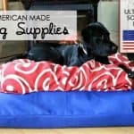 Dog Supplies: A Made in USA Source Guide