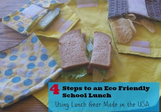 EcoFriendly School Lunch