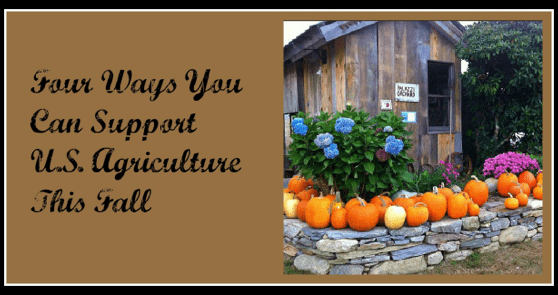 Fall is the perfect time of year to get in touch with your local farming scene - Four ways to Support US Agricuture and have fun with your family.