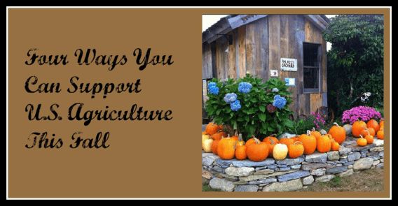 Keep It Made in the USA: Four Ways to Support Local Agriculture this Fall