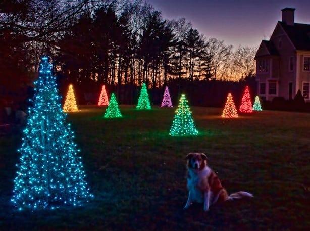 Crab Pot Trees Christmas Tree - American-Made-Products-from-North-Carolina-via-USALoveList.com