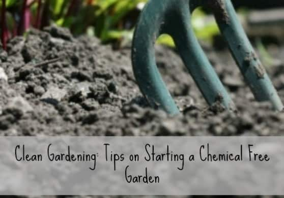 Clean gardening with words