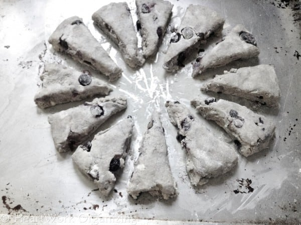 6) Blueberry-Scones-2-600x448