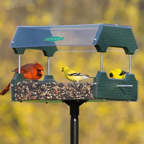 Feeding wild birds: Duncraft Eco-Strong platform and bird feeder | Made in USA bird feeder