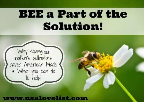 Bee a Part of the Solution! Help Save Pollinators!