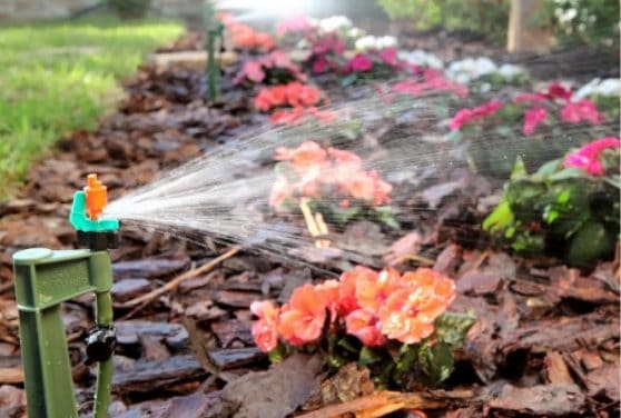 Giveaway: Mister Landscaper EcoFriendly Micro Sprinkler Irrigation Kits