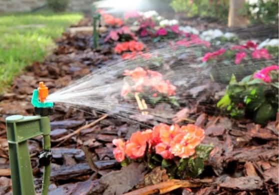 Mister Landscaper EcoFriendly Irrigation Systems