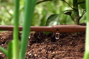 Mister Landscaper Drip Irrigation System for row gardens | Made in USA