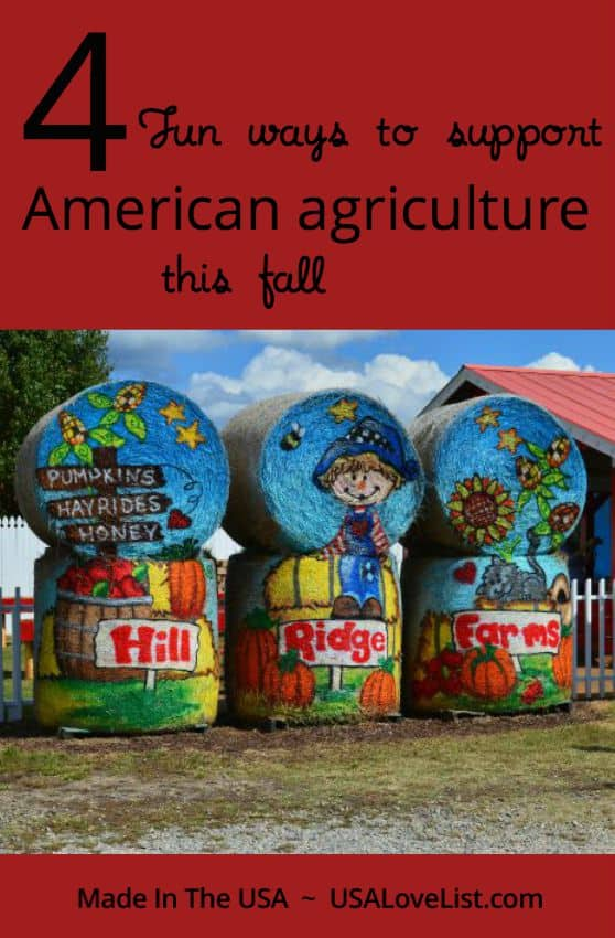4 Fun Ways to support American Agriculture, via USAlovelist.com