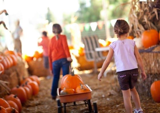 5 Tradition Worthy Family Halloween Activities
