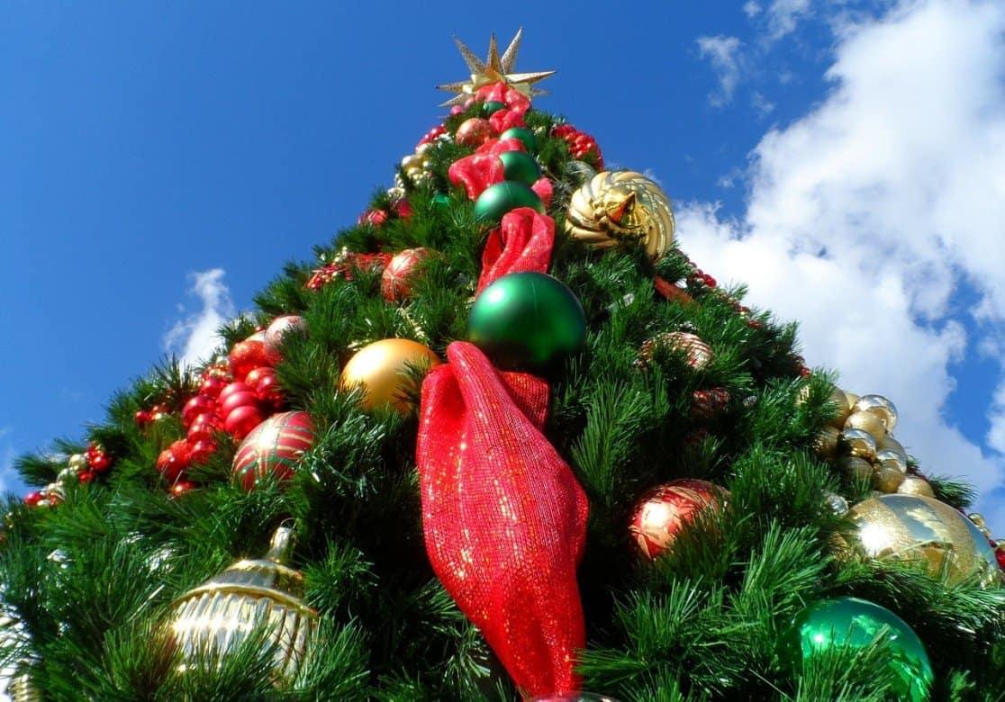 christmas-tree-227014_1280