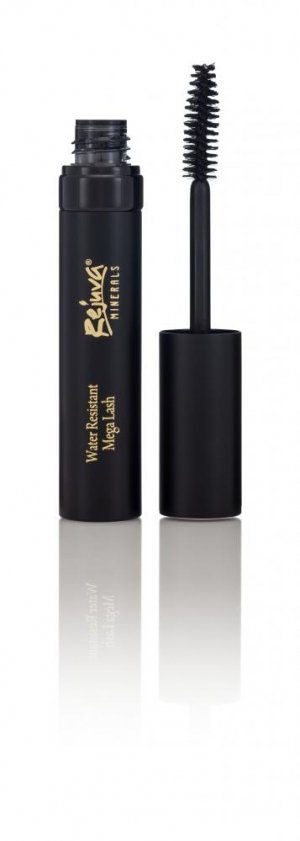 Soy Free, Gluten Free, GMO Free, Mascara From Rejuva Minerals - 15 Percent off with Code love via USALoveList.com