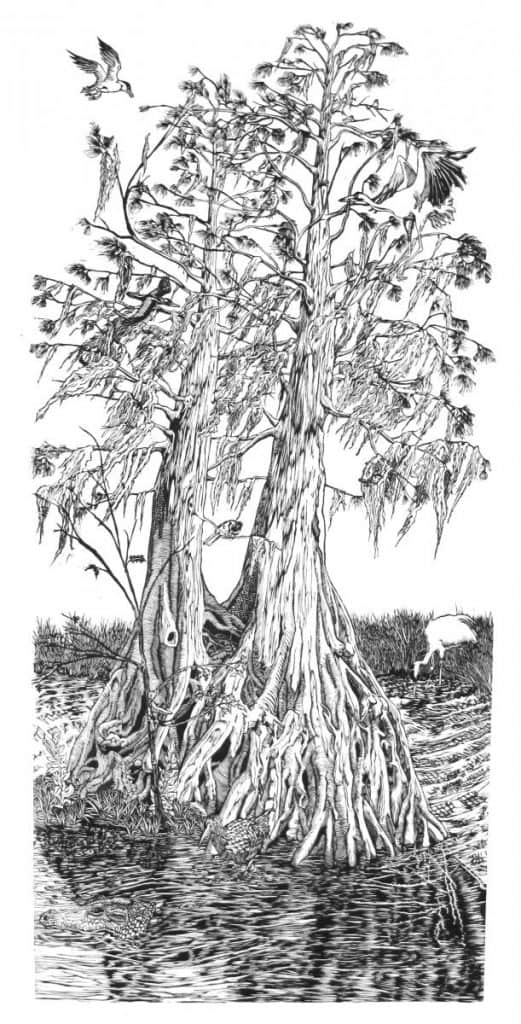 Celebrate Mardi Gras, with Ten Things We Love, Made in Louisiana, Like Pippin Frisbie Calder's Cypress Print