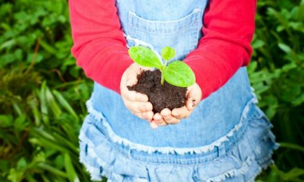 Kids' Gardening Tips with Natural, American Made Products You'll Love