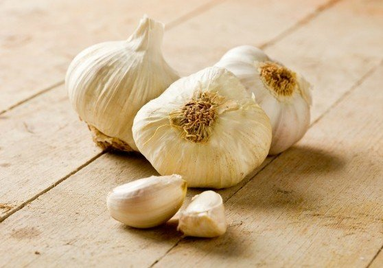 National Garlic Month: Garlic list for foodies