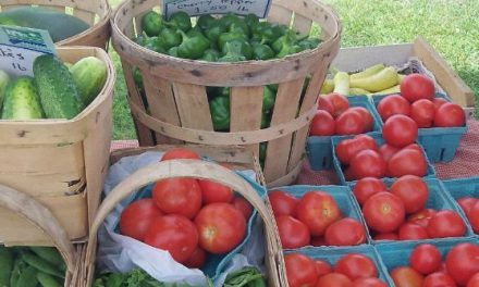 5 Reasons Why Every Community Needs a Farmers' Market