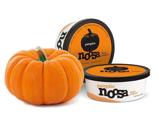 Pumpkin Spice Products Made in USA: Noosa Pumpkin Yogurt Reviewed-on-USALoveList.com