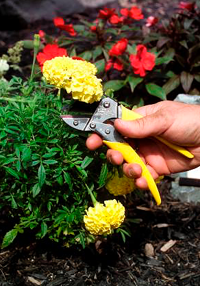 Gifts for New Homeowners: Florian Tools #gardening #gardentools #gifts