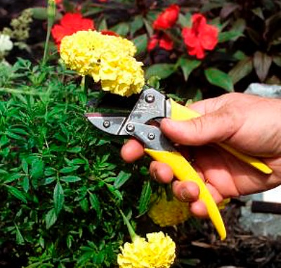 FLORIAN TOOLS GIFTS FOR THE GARDENER