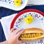 Eight Sources for Patriotic Items Made in the USA for MEMORIAL DAY, 4th of July, and More