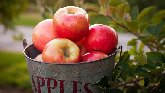How to Make Apple Cider From Fresh, Local Apples