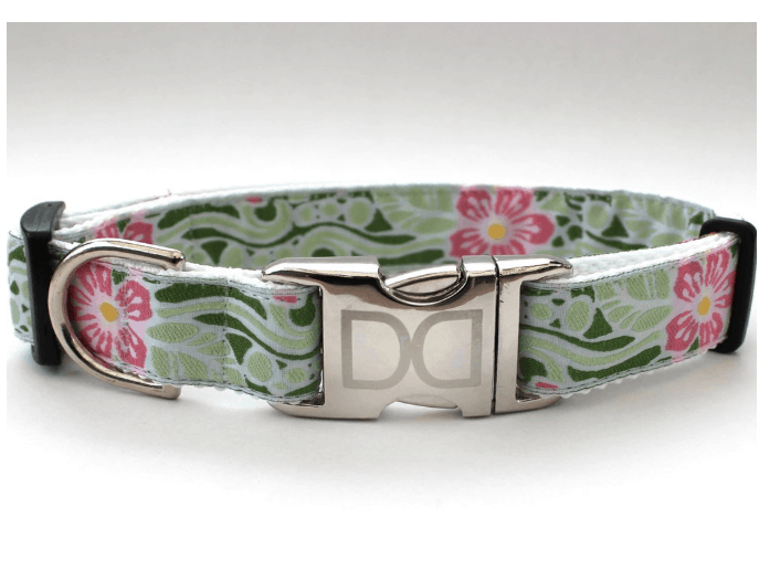 Diva-Dog Collars and Leashes