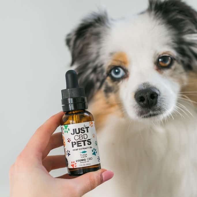 JustCBD for Pets - CBD Hemp Extract Oil for Pets - Tuna Flavor - 25% off discount code USALOVE. - JustCBDStore.com Made in USA CBD Products