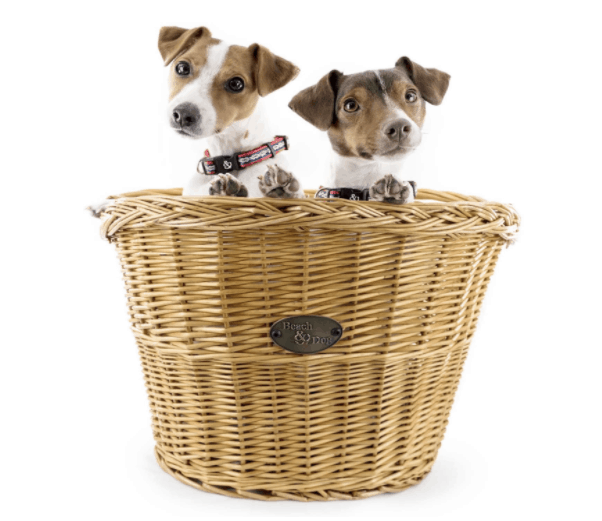 Made in USA Dog Supplies: Beach & Dog Co. bike baskets for small dogs.