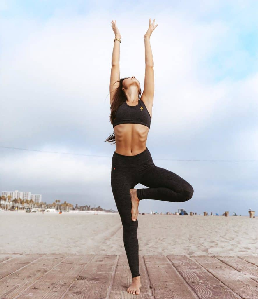 Aviator Nation - Made in USA Activewear and Leggings - Made in LA Fashion