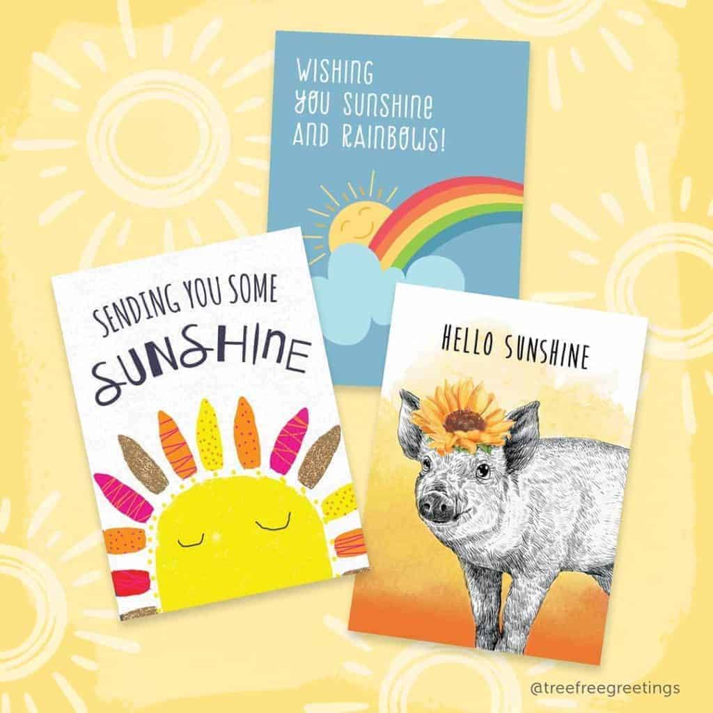 Eco-Friendly Greeting Cards from Tree-Free Greetings - Made in New Hampshire - Made in USA